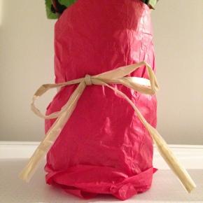 DIY #5 Créer un vase en 5 minutes!